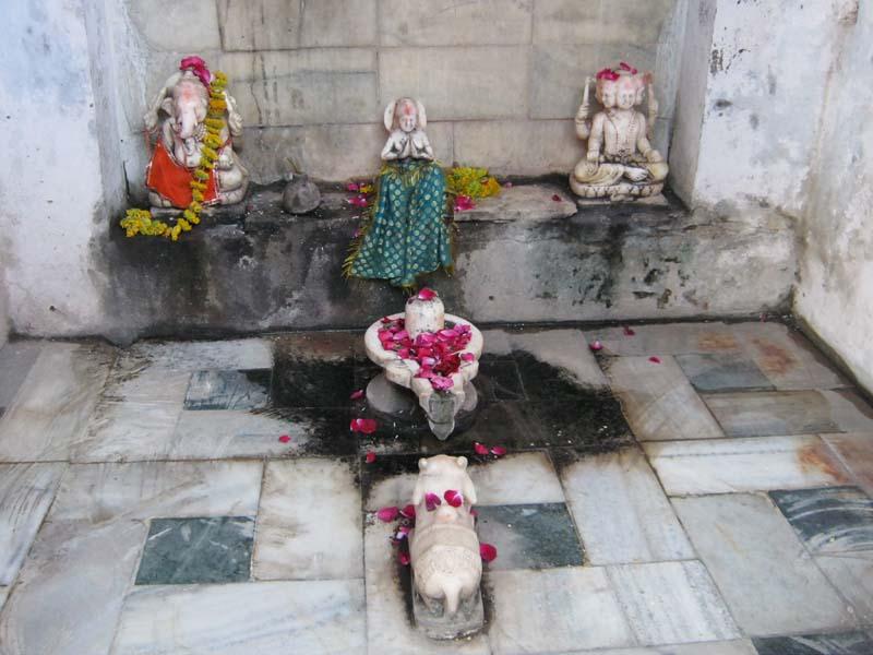 Pushkar Lingam Puja