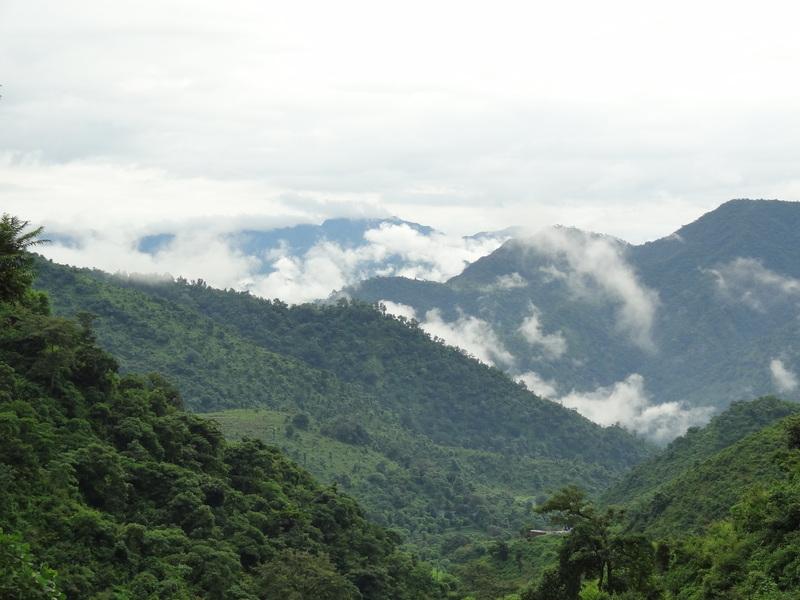 2012rishikeshpranayama